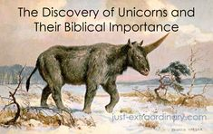 Recently, scientists discovered a unicorn skull in Kazakhstan. Surprised to hear it? Well, you might be more surprised that the Bible mentions these interesting animals, too.