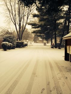 Snowy pa