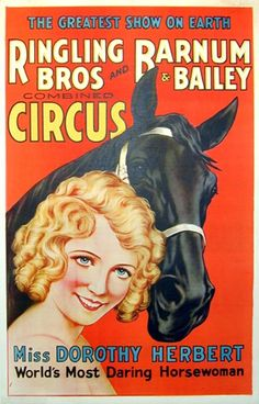 Ringling Bros. and Barnum Bailey Circus Miss Dorothy Herbert, c. 1935