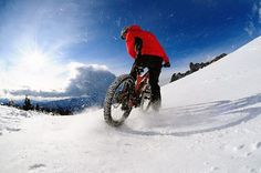 fatbike: the new must!
