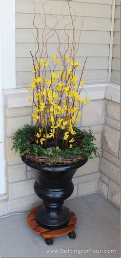 Urn with faux forsythia, curly willow branches & grapevine wreath with faux boxwood.  Add a spotlight in the center for a pretty glow.