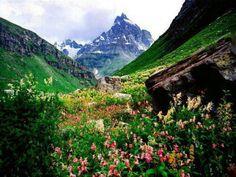 """Kashmir - """"Heaven on Earth"""""""