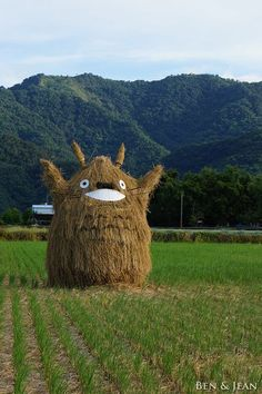 There should be more large scale sculptures in the fields!  Totoro scarecrow! Too marvelous to not pin.