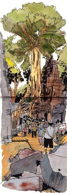 Ta Prohm temple sketch at Tomb Raider tree