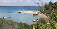 Ilha de Santo Aleixo em Pernambuco – o paraíso perto de Porto de Galinhas Beach, Water, Travel, Outdoor, Travel Tips, Family Trips, Close Up, Littoral Zone, Island