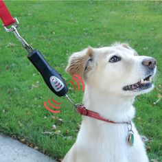 The Tug-Preventing Dog Trainer - Hammacher Schlemmer - Suitable for all dog breeds and sizes, this ultrasonic device trains dogs to walk without tugging their owner.