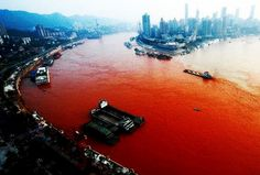 WARNING: WHY ARE SO MANY BODIES OF WATER TURNING BLOOD RED THE LAST FEW YEARS?!!!  Posted on 3/25/2014 by Eliyokim Cohen. Perhaps Tehillim 78:44-51 can shed some light on why so many bodies of water around the world are turning BLOOD RED is this the first sign of Hashem's (God's) punishment towards the nations oppressing Israel? He turned their canals into blood, and their flowing waters they could not drink.  He incited against them a mixture of wild beasts, ... (7/27/2014) (Christian CTS)