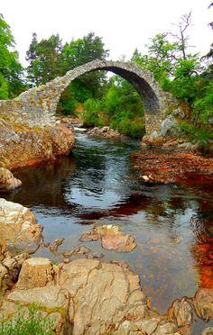 Carrbridge, Cairngorms, Scottish Highlands, Scotland