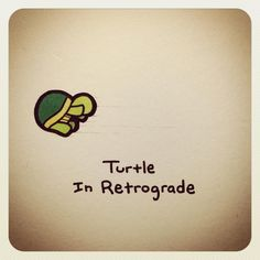 Turtle in retrograde Cute Turtle Drawings, Turtle Sketch, Cute Animal Drawings, Cute Drawings, Mini Turtles, Cute Turtles, Baby Turtles, Turtle Meme, Cartoon Turtle