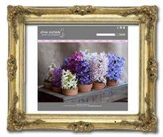 website for Clive Nichols  www.clivenichols.com
