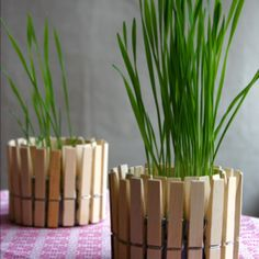 Saw this on FB and found it on http://cfabbridesigns.com/craft-projects/clothespin-planter/  Just a simple tin can and a few clothes pins, and it looks so creative! Gotta do this some day with the kids.