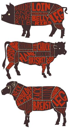 Know your butcher cuts of meats - Pork, Beef and Lamb---always liked how cute this series is