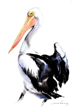 """Saatchi Art is pleased to offer the drawing, """"Pelican Wonder,"""" by Soo Beng Lim, … Pelican Drawing, Pelican Art, Watercolor Bird, Watercolor Animals, Watercolor Paintings, Watercolor Drawing, Painting Abstract, Acrylic Paintings, Acrylic Art"""