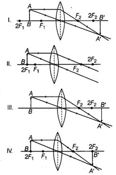 194 Best NCERT Solutions for Class 10 Science images
