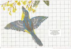 Gallery.ru / Фото #101 - Le grand livre des oiseaux - irinask