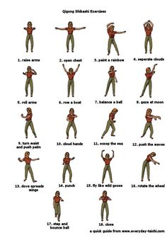 The shibashi memory chart has a single figure for each of the 18 postures. check more here - www.taichiforbeginners.net
