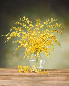 """Artificial Oncodium Orchid Stems   40"""" x 1.5""""   Yellow"""