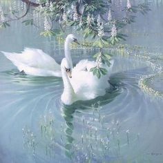 Harmony of Spring' – Two Swans Angel Aesthetic, Nature Aesthetic, White Aesthetic, Aesthetic Photo, Aesthetic Pictures, Aesthetic Bedroom, Aesthetic Clothes, Blue Feeds, Princess Aesthetic