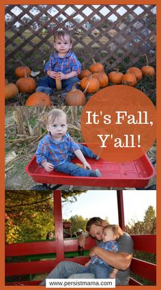 It's Fall, Y'all! Fall in the South is my favorite time of the year! Autumn Activities, Time Of The Year, Infant Activities, Fall Season, Seasons, Halloween, Pumpkins, Holiday, Fun
