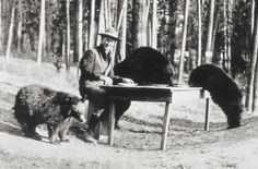 9 Things That Used to be allowed in Yellowstone National Park that Would Never Happen Today | Matador Network | Click to read and share some photos and history of Yellowstone.