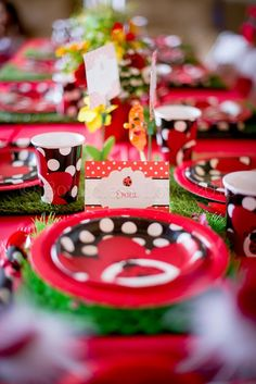 Table Settings at a Ladybug Party--I love how simple and cute it is! I would use it for a little girls party. I think it would cost about $30-$45.