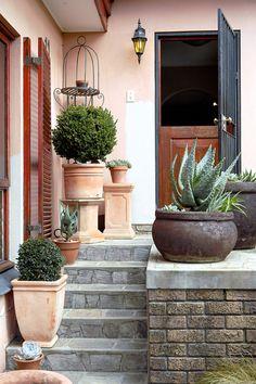 Plant aksentplante soos aalwyne en vormgesnoeide eugenias in houers langs die trappe.