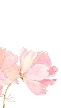 Image result for watercolor iphone 5s wallpaper