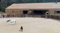 WG mit vier Hufen - DEAR Wohnen - Projekte | dear-magazin.de Landscape, Animals, Architecture, Weekend House, Projects, Homes, Animales, Animaux, Scenery