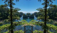 Cape Flattery Reflection A reflection shot of sea stacks at Cape Flattery, the northwesternmost point of the contiguous United States, in Washington State. Cape Flattery northwesternmost point contiguous United States Washington State beautiful wilderness outside PNW outdoors pacific northwest explore view views quest live authentic outbound reflection mirror