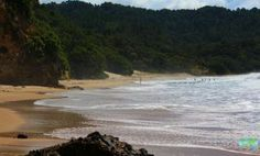 New Chums Beach, Auckland - New Chums Beach is a 'hidden beach' situated in Wainuiototo Bay on the Coromandel Peninsula. The secluded beach can only be accessed by boat or a testing walk. Secluded Beach, Hidden Beach, Auckland, Things To Do, Boat, Water, Outdoor, Water Water, Outdoors