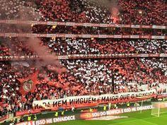 Benfica 0 - 3 Sporting: Minuto 70 - das maiores demonstraçoes de amor clubistico em Portugal