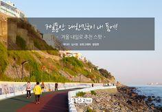 7일동안 대한민국이 내 품에! 겨울 내일로 추천 스팟 | Special Journey sjzine