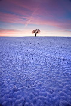 """""""Ecstatic Wonder,"""" by Jason Theaker, via Flickr -- Sunrise at the first snowfall of the year in Yorkshire."""