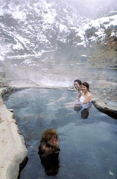 Enjoying the onsen with a snow monkey
