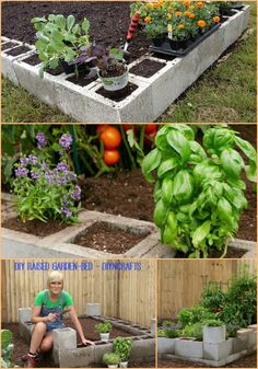 Brilliant Gardening Project: How to Make a Raised Garden Bed Using Cement Blocks...