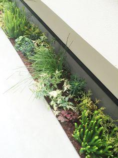 Home Living Room, Entrance, Home And Garden, Herbs, Exterior, Landscape, Plants, House, Design