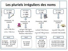 Rappel grammatical: formation du féminin, formation des pluriels irréguliers - 2e du niveau avancé (B2+).