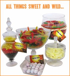 Reptile Party Ideas candy table?