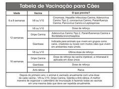 calendario de vacinacao caes