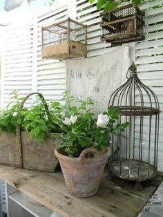 Birdcages... Wooden Containers...  Think GARDEN!*!*!