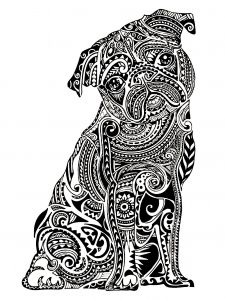 Display image coloring-adult-difficult-little-bulldog