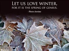 Superbe Let Us Love Winter.