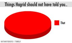 nathanthenerd:br br Things Hagrid should not have told you.. photo 1