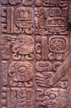 ancient words carved in stone. Ancient Scripts, Ancient Words, Ancient Art, Mayan Glyphs, Mayan Symbols, Egyptian Symbols, Ancient Symbols, Tikal, Mayan History