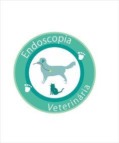 Logo de uma veterinária, na qual era especializada em endoscopia.