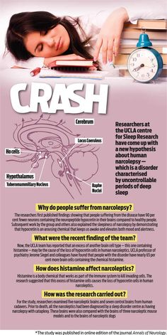 What is human narcolepsy? - Researchers at the UCLA centre for Sleep Research have come up with a new hypothesis about human narcolepsy, which is a disorder characterised by uncontrollable periods of deep sleep. Adrenal Fatigue, Chronic Fatigue, Chronic Illness, Narcolepsy Diet, Idiopathic Hypersomnia, What Is Human, Hypothyroidism, Health And Wellbeing