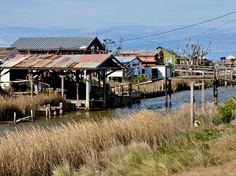 The Bayou of the Isle de Jean Charles #Louisiana where the film Beasts of the Southern Wild was filmed #iGottaTravel