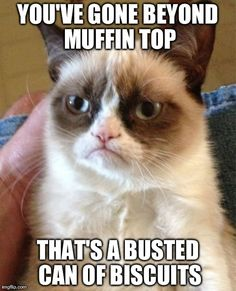 Grumpy Cat classic #GrumpyCat #humor #meme #quote
