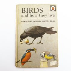 Items similar to Birds and How They live by F.Newing, B.Bowood with illustrations by R. Series 651 The Ladybird Book, 1966 on Etsy Ladybird Books, Children Books, Vintage Children's Books, Craft Shop, History Books, Natural History, Birds, Illustrations, Live