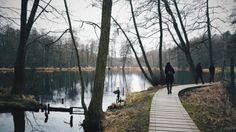 """In Birkenwerder (das ist schon Brandenburg!) könnt ihr einen wundervollen Spaziergang machen oder zu einer kleinen Radtour starten. Das Briesetal hätte auch Kulisse bei """"Herr der Ringe"""" sein können, ist aber einfach nur ein schönes Fleckchen mit Wald, Sträuchern und Feuchtbiotop. Wenn ihr euch nicht weit von Birkenwerder wegbewegt, solltet ihr es euch nach dem Spaziergang auf der Seeterrasse am Boddensee gemütlich machen. Wer bis nach Zühlsdorf unterwegs ist, kann einen Stop im Alten…"""